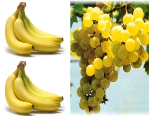 buah-buahan berwarna kuning