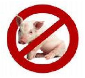 Alasan daging babi diharamkan