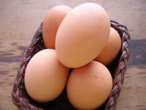 Manfaat telur ayam